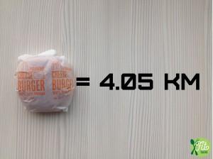 Cheese Burger Mcdonalds calorie