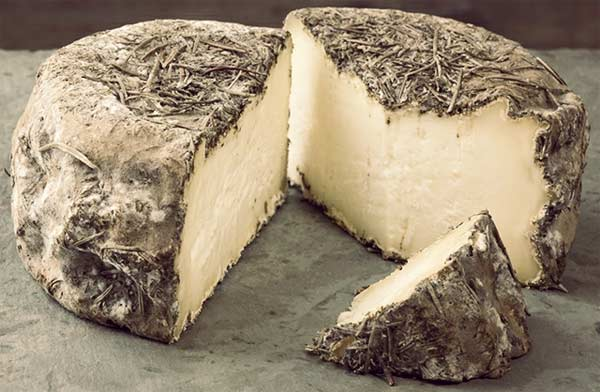 oldest cheese