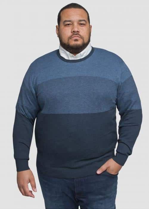 grande taille pull